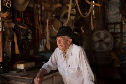Portraits taken of Fargo at Museum Ranch in Wilcox, Arizona by Paul Davis Photography