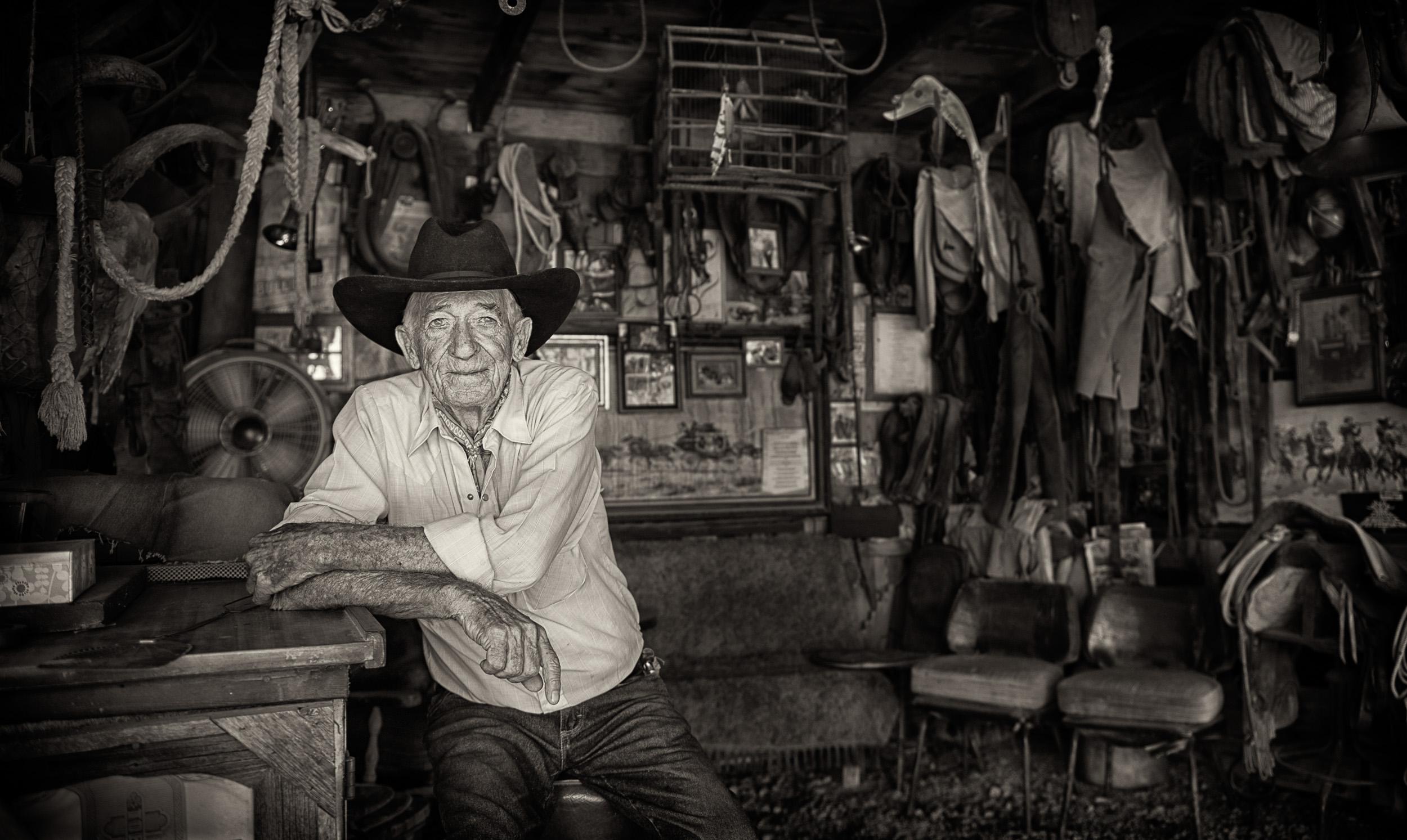 Portraits taken of Fargo at Museum Ranch in Wilcox, Arizona by Paul Davis Photography